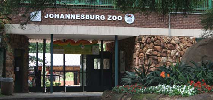 Johannesburg Zoo Africa Guide To Johannesburg Best Attractions | South Africa