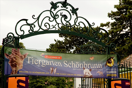Tiergarten Schönbrunn Vienna Travel Guide | 5 Hottest And The Best Tourist Attractions